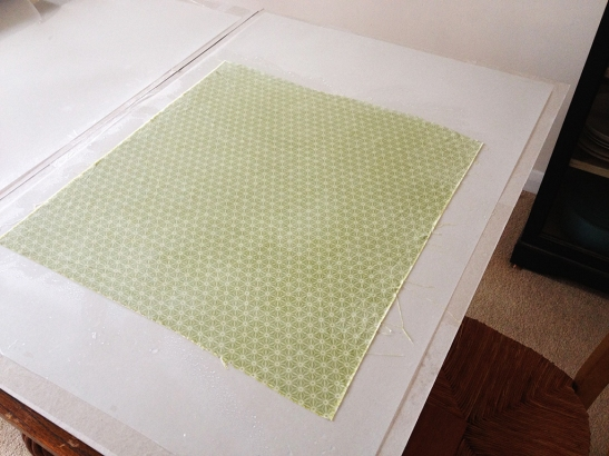 bookcloth19